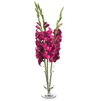 gladiolus  elegant flower bouquet  in a high glass vase