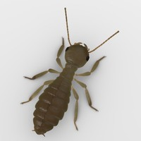 3ds termite worker