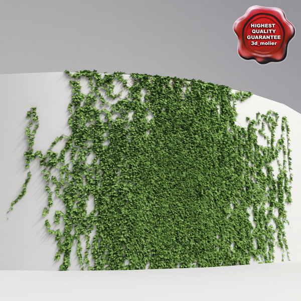 Wall_with_ivy_V1_00.jpg