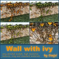 3d wall ivy model