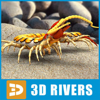 Scolopendra by 3DRivers