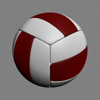 volley ball max