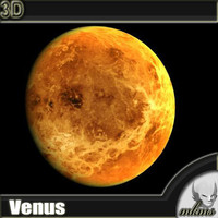 3d realistic venus model