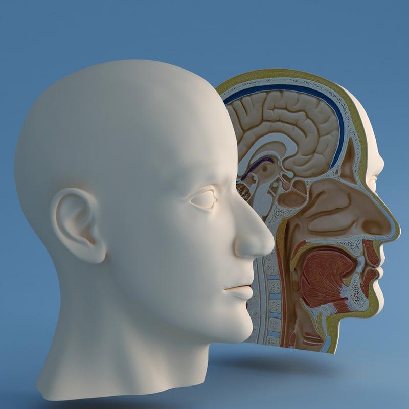 headsection1prev.jpg