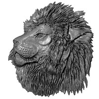 Lion Head Relief