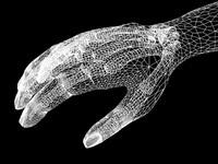xray hand 3d model