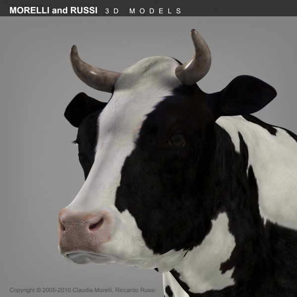 morelli cow 3d obj - COW... by MORELLI and RUSSI 3D models