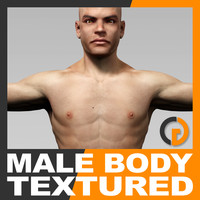 Human Male Body Textured - Anatomy