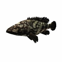 3ds max grouper