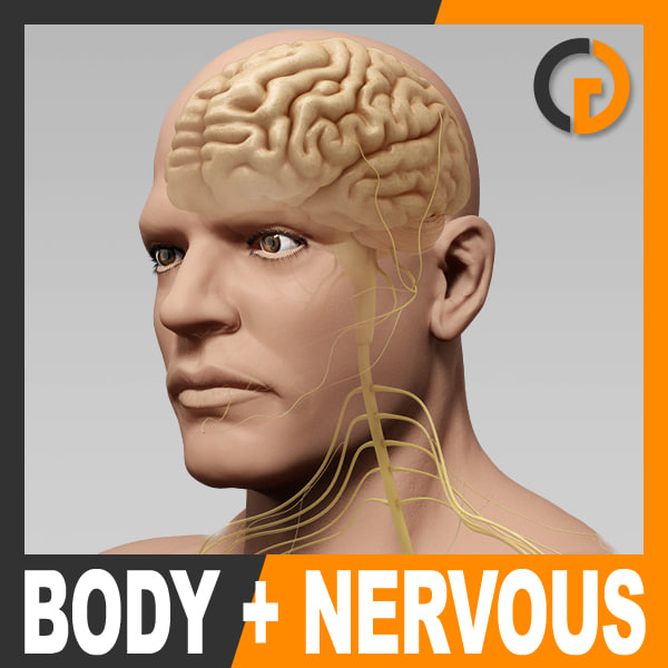 BodyNervous_th001.jpg