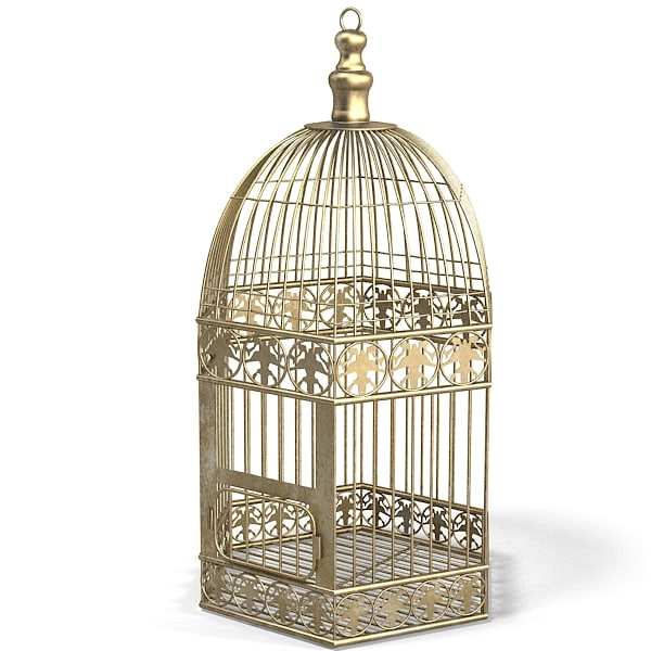 cage bird classic wire lattice bronze brass.jpg