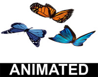 blend borboletas