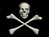 skull character max
