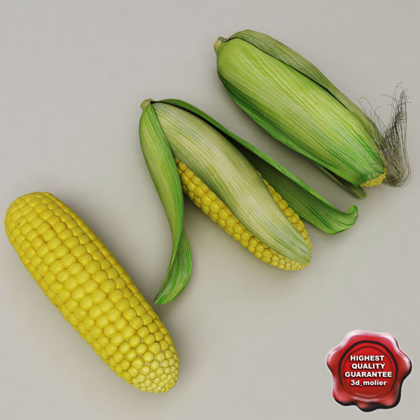 Corn_Collection_00.jpg