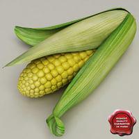 Corn V2