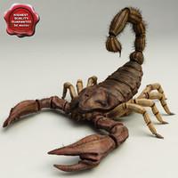 3d scorpion v2