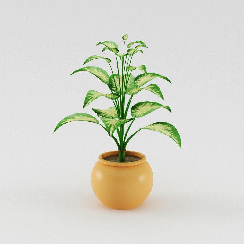 plant040000.jpg