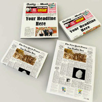 3d editable newspapers model