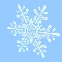 snowflake snow 3d lwo