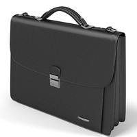 buisness man bag 3ds