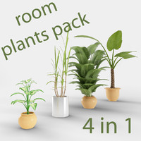 room plant pack