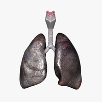 3ds max lungs abused realistic