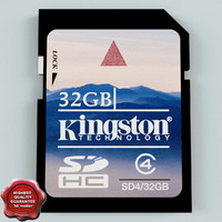 Memory Card SD 32 GB