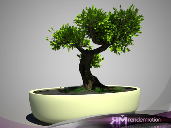 d2 c1 10 bonsai tree 3d max - D2.C1.10 Bonsai... by danielkenobi
