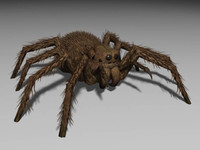 3d model of monster spider