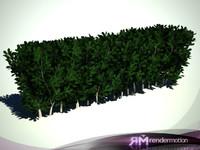 D2.C1.07(1) Clove bush(I Shape)-Arbusto Clavo(Forma de I)