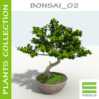 Tree - Bonsai_02