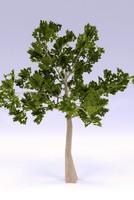 tree plant 3ds
