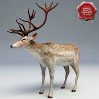 deer v1 3d 3ds