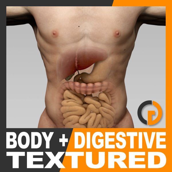 BodyDigeTex_th01.jpg