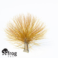 golden willow planted 3d model