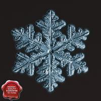 snowflake v7 3d x