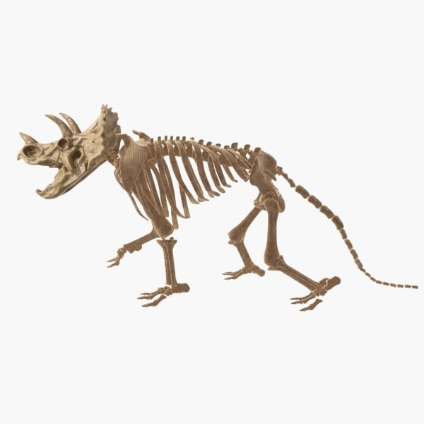 3ds max triceratops skeleton