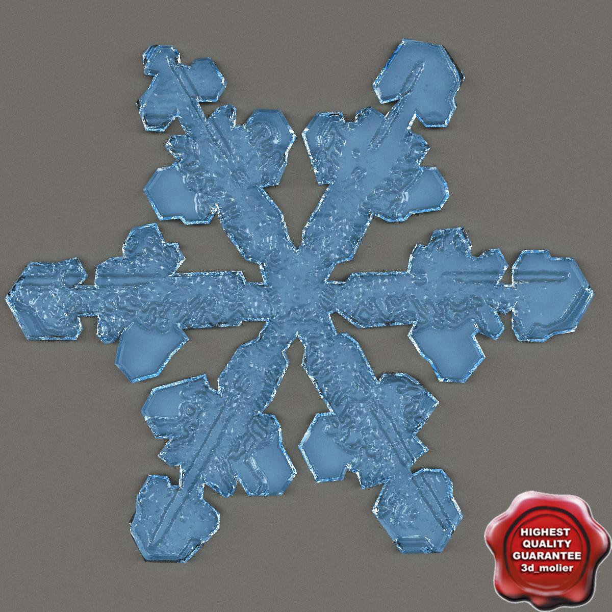 Snowflake_V2_0.jpg