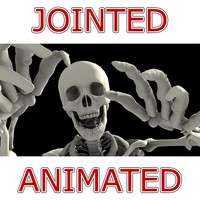 Human Skeleton Jointed & Animated