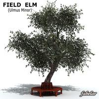 3d field elm model