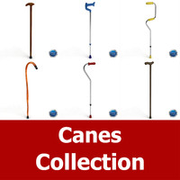 Cane Collection