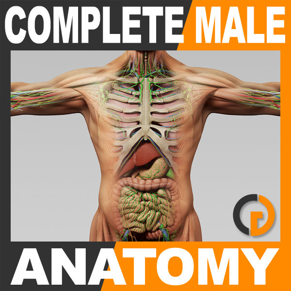 CompleteAnatomy_th001.jpg