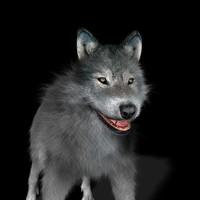 wolf 3d obj