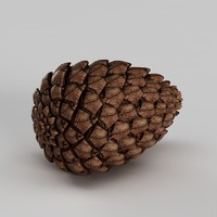 pine cone 3d 3ds