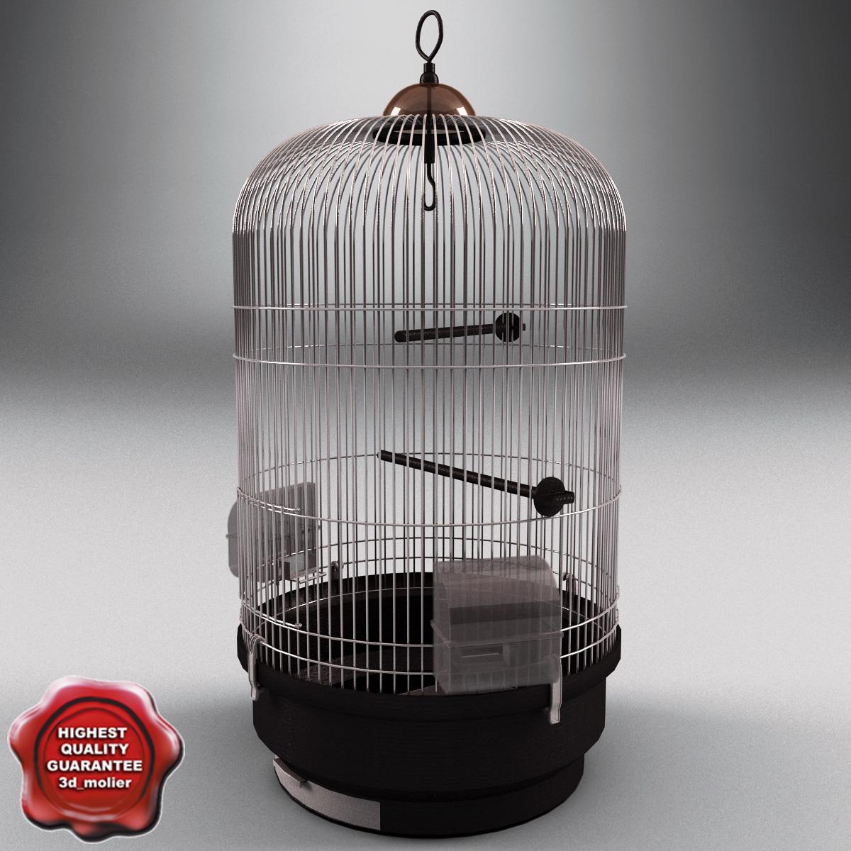 Bird_Cage_V2_00.jpg