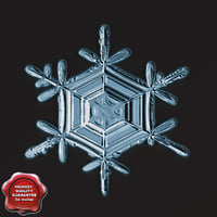 snowflake v8 3d model