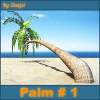 3d model beach palm