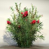 3d model pc bush