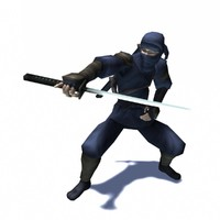 Ninja Assassin rigged & animated