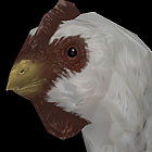 white chicken 3d max